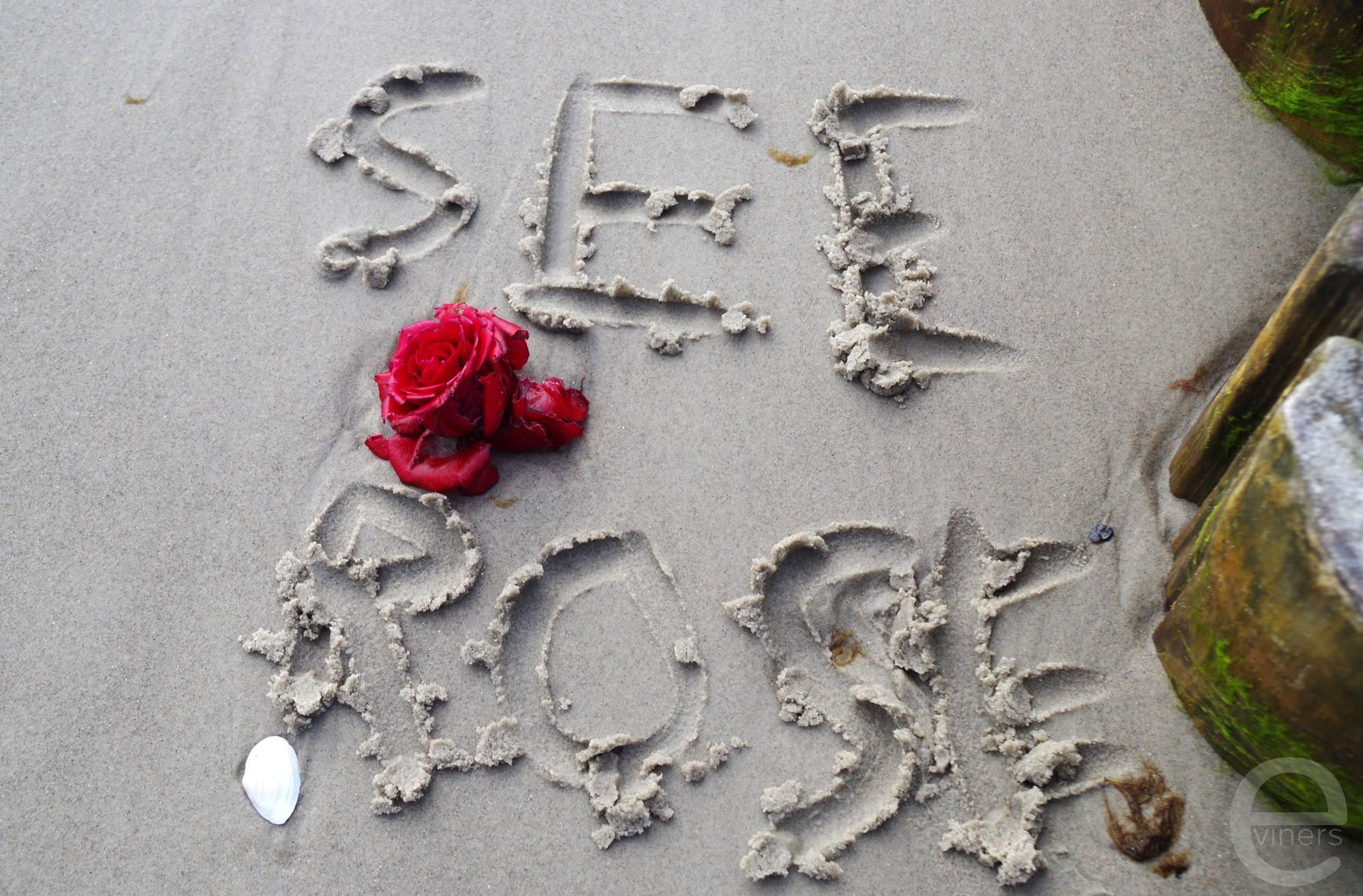 Story on the Beach